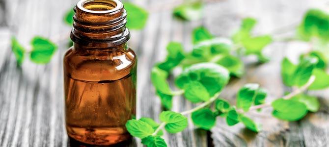 El aceite de Rosa Mosqueta. Beneficios y propiedades