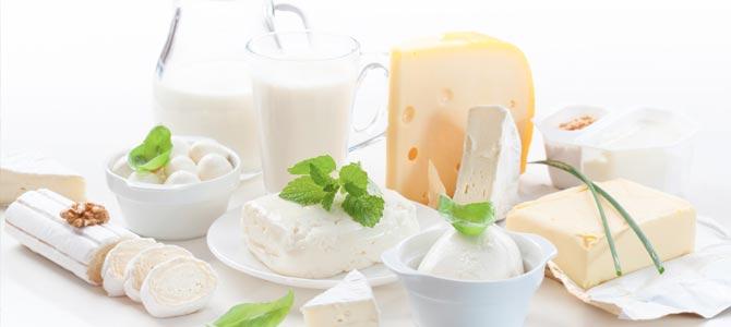 Los alimentos probióticos y prebióticos